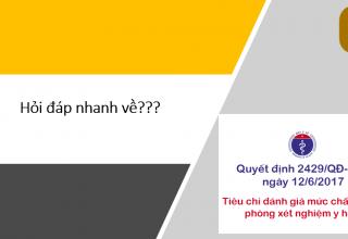 hoi-dap-ve-2429