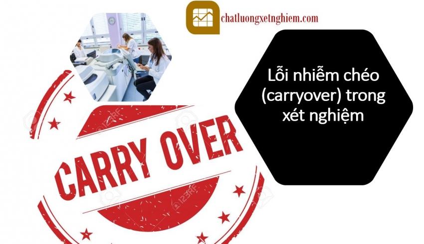 loi-carryover