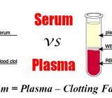 Sự khác biệt giữa Serum (huyết thanh) và Plasma (huyết tương)